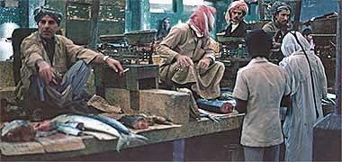 Inside the fish suq, April 1977
