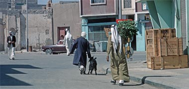 A porter helping a customer with a goat, March 1972