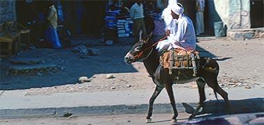 A donkey being ridden through the suq in 1972